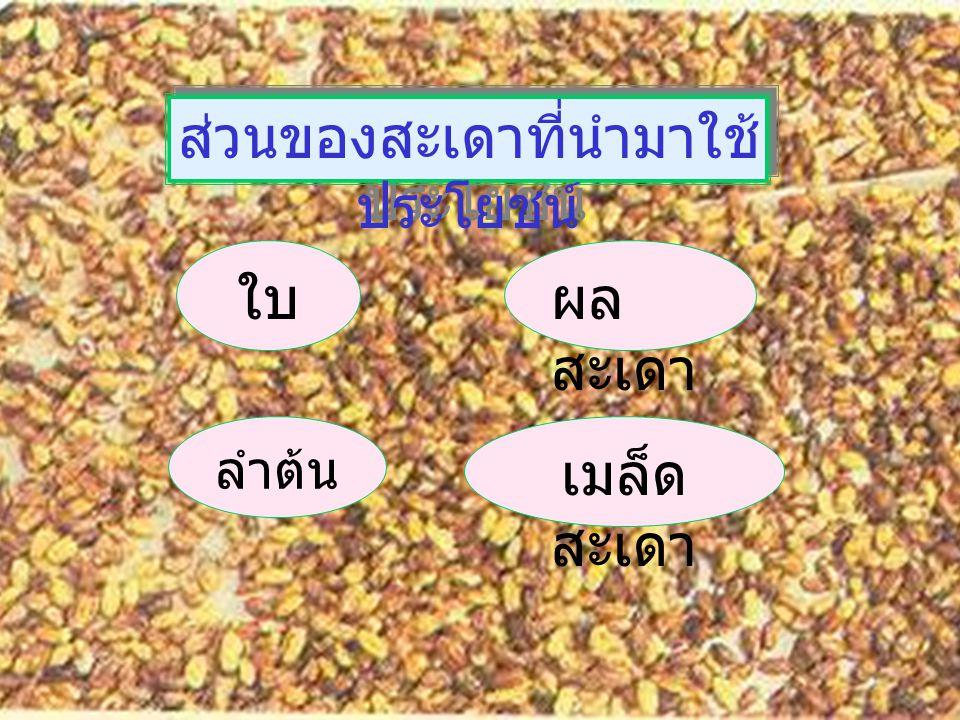 สารอินทรีย์ 56 สาร 35 สาร ใบใบ 9 สาร ( รศ. ดร. งามผ่อง คงคาทิพย์ ) เมล็ ด