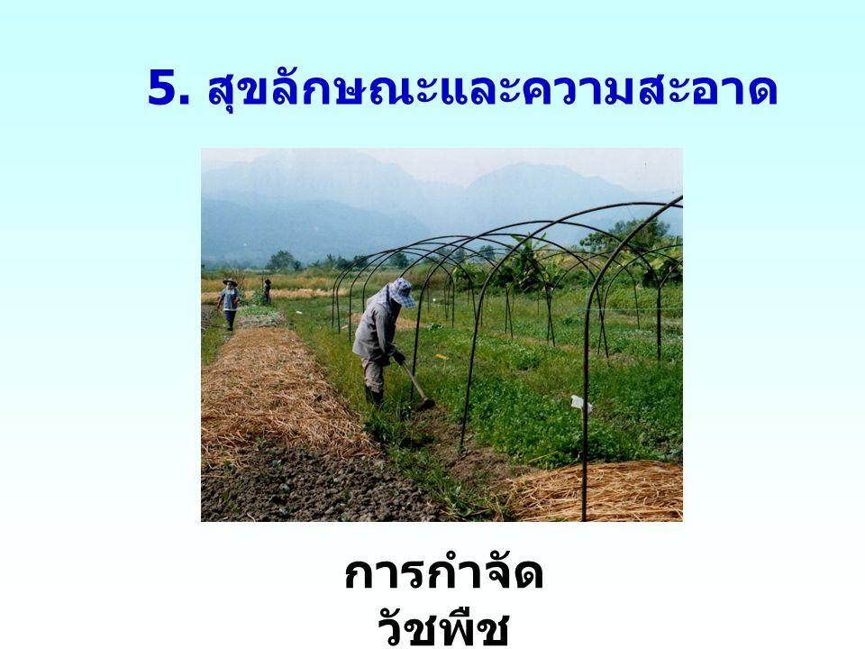 5. สุขลักษณะและความสะอาด การกำจัด วัชพืช