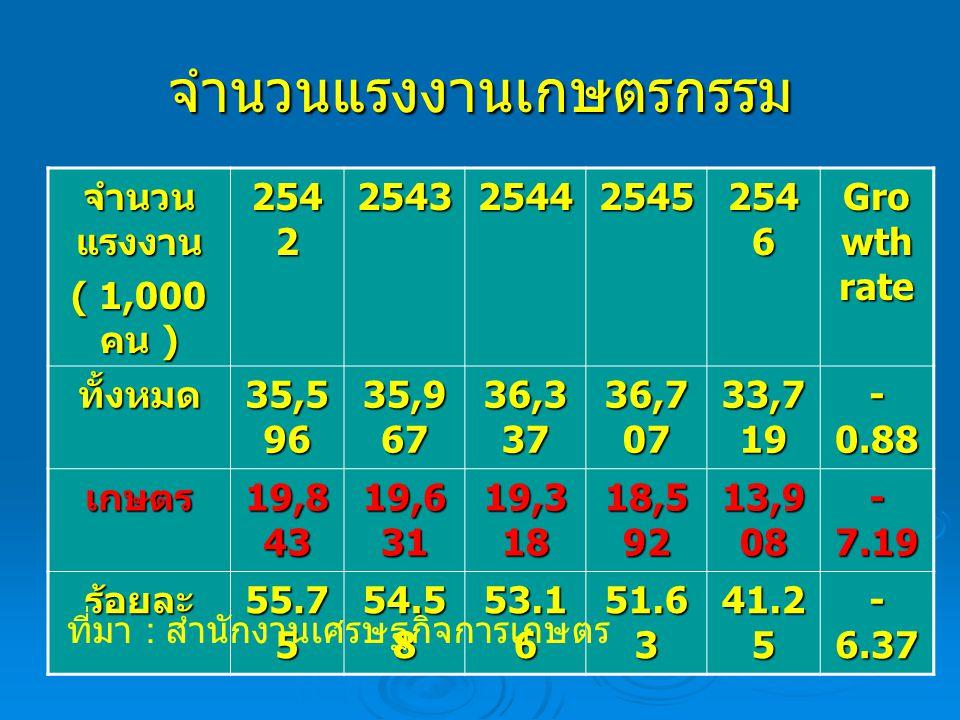 จำนวนแรงงานเกษตรกรรม จำนวน แรงงาน ( 1,000 คน ) 254 2 254325442545 254 6 Gro wth rate ทั้งหมด 35,5 96 35,9 67 36,3 37 36,7 07 33,7 19 - 0.88 เกษตร 19,8