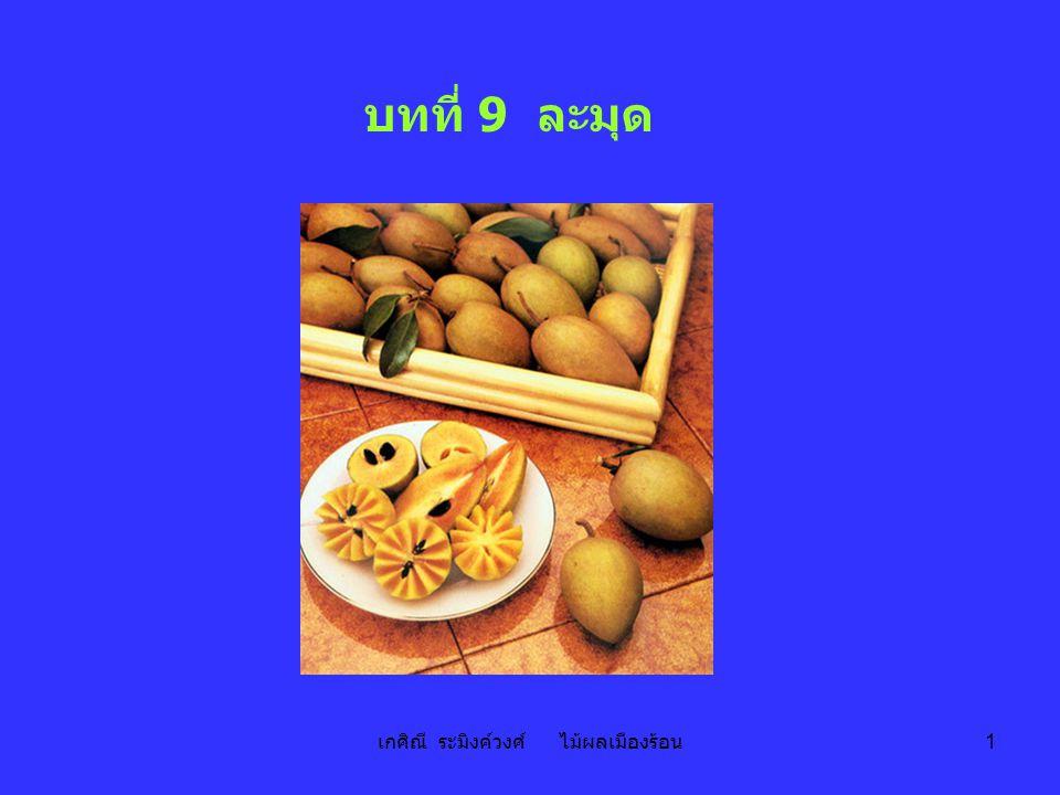 เกศิณี ระมิงค์วงศ์ ไม้ผลเมืองร้อน 1 บทที่ 9 ละมุด
