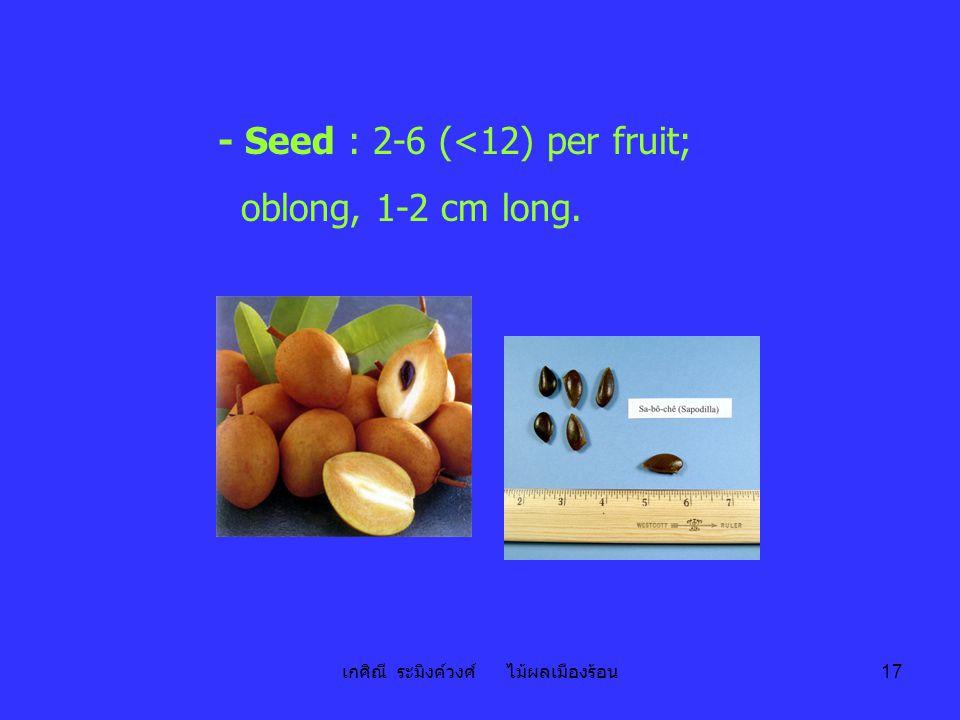 เกศิณี ระมิงค์วงศ์ ไม้ผลเมืองร้อน 17 - Seed : 2-6 (<12) per fruit; oblong, 1-2 cm long.