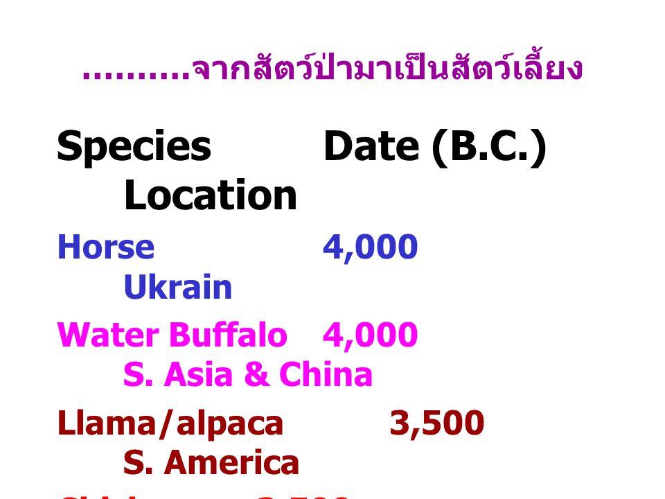 ………. จากสัตว์ป่ามาเป็นสัตว์เลี้ยง SpeciesDate (B.C.) Location Horse4,000 Ukrain Water Buffalo4,000 S. Asia & China Llama/alpaca3,500 S. America Chicke
