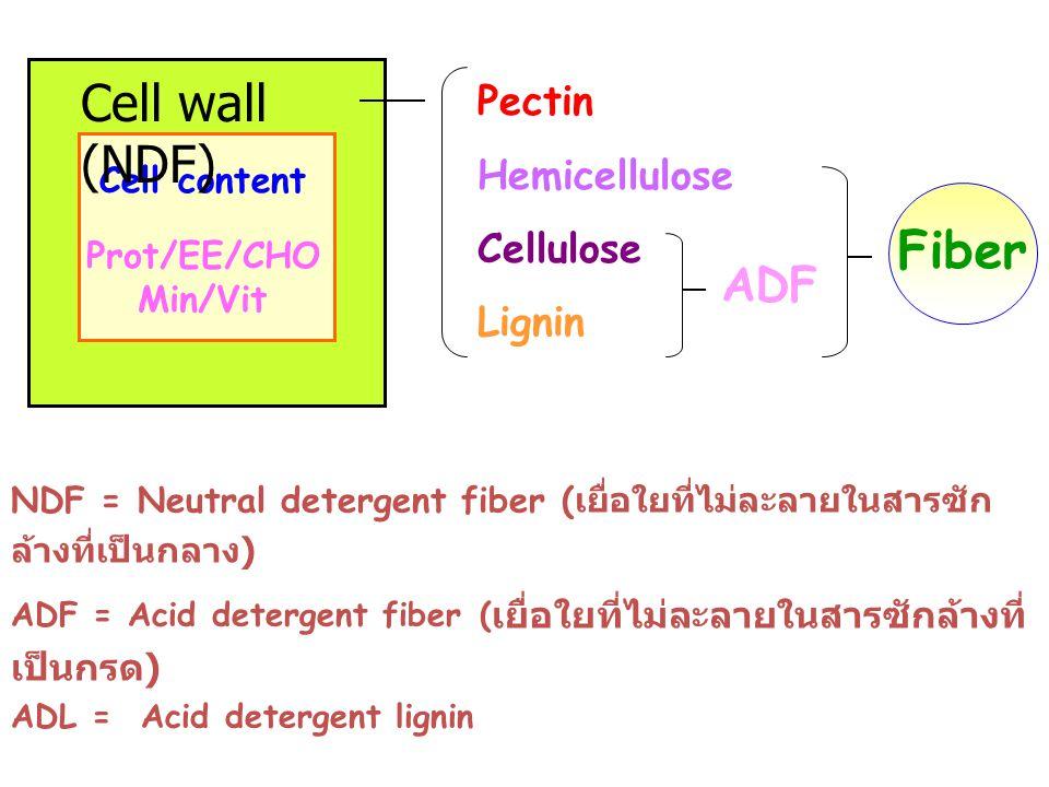 NDF = Neutral detergent fiber ( เยื่อใยที่ไม่ละลายในสารซัก ล้างที่เป็นกลาง ) ADF = Acid detergent fiber ( เยื่อใยที่ไม่ละลายในสารซักล้างที่ เป็นกรด )