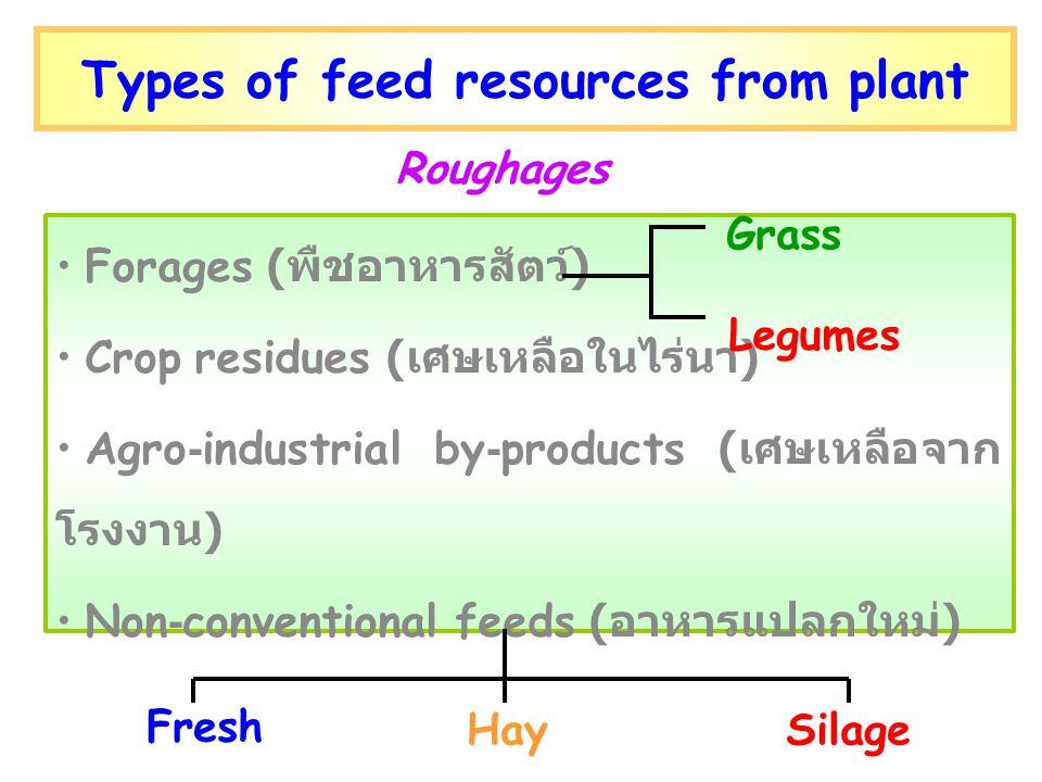Types of feed resources from plant Forages ( พืชอาหารสัตว์ ) Crop residues ( เศษเหลือในไร่นา ) Agro-industrial by-products ( เศษเหลือจาก โรงงาน ) Non-