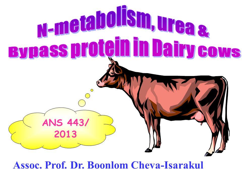 โปรตีนคุณภาพต่ำ ควรให้ย่อย สลายในรูเมน เพื่อสร้างเป็น microbial protein ซึ่งมีคุณภาพดีกว่าเดิม ( กำไร ) เพราะ microbial protein มีคุณภาพ ค่อนข้างดี โปรตีนคุณภาพสูง ควรทำให้ bypass มาก เพราะถ้าย่อยในรูเมน จะได้ NH 3 & microbial protein ซึ่งมี คุณภาพต่ำ กว่าเดิม & เกิดการสูญเสีย ( ขาดทุน )
