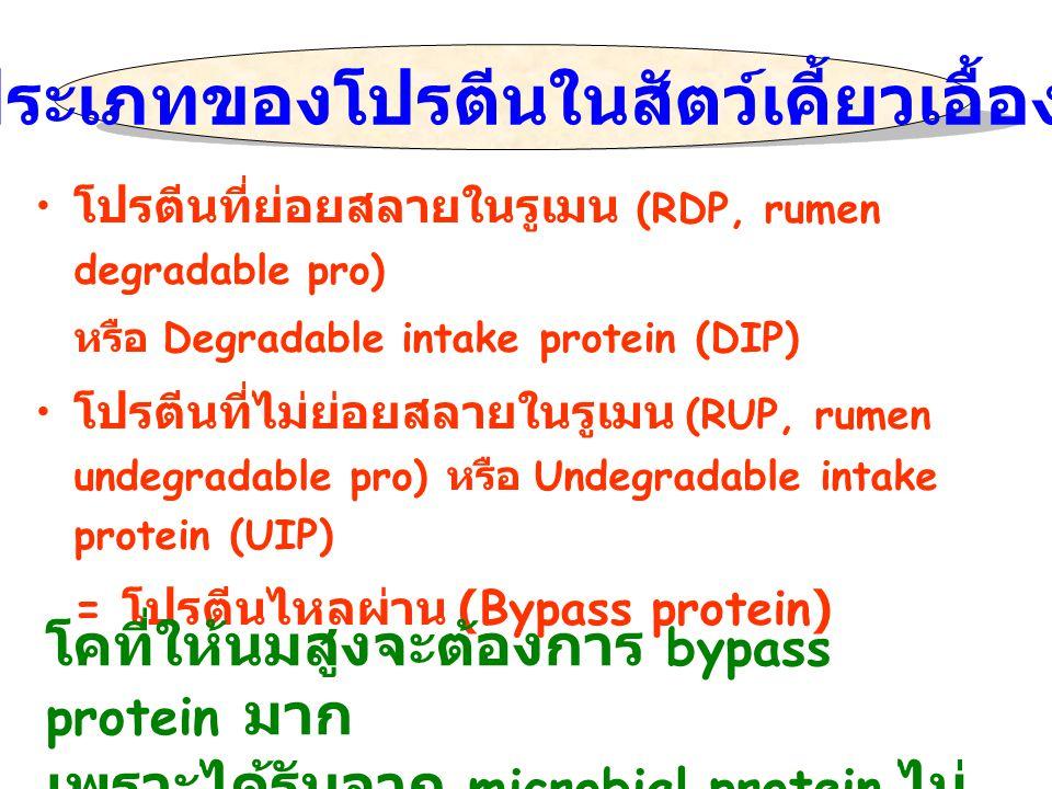 โปรตีนที่ย่อยสลายในรูเมน (RDP, rumen degradable pro) หรือ Degradable intake protein (DIP) โปรตีนที่ไม่ย่อยสลายในรูเมน (RUP, rumen undegradable pro) หร