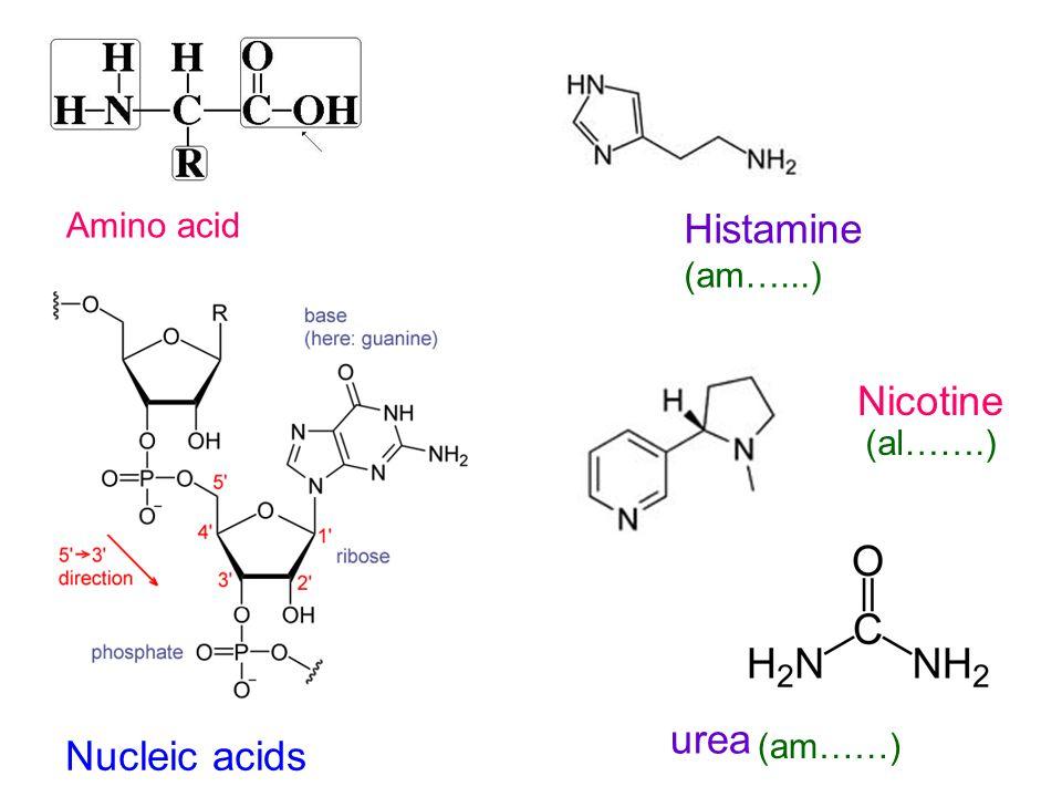Amino acid Nucleic acids Histamine (am…...) Nicotine urea (al…….) (am……)