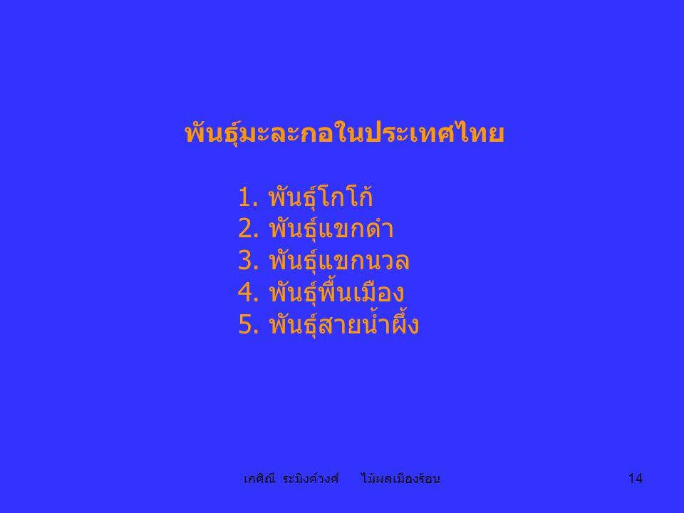 เกศิณี ระมิงค์วงศ์ ไม้ผลเมืองร้อน 14 พันธุ์มะละกอในประเทศไทย 1. พันธุ์โกโก้ 2. พันธุ์แขกดำ 3. พันธุ์แขกนวล 4. พันธุ์พื้นเมือง 5. พันธุ์สายน้ำผึ้ง