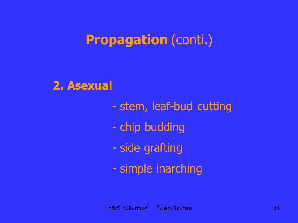 เกศิณี ระมิงค์วงศ์ ไม้ผลเมืองร้อน 31 Propagation (conti.) 2. Asexual - stem, leaf-bud cutting - chip budding - side grafting - simple inarching