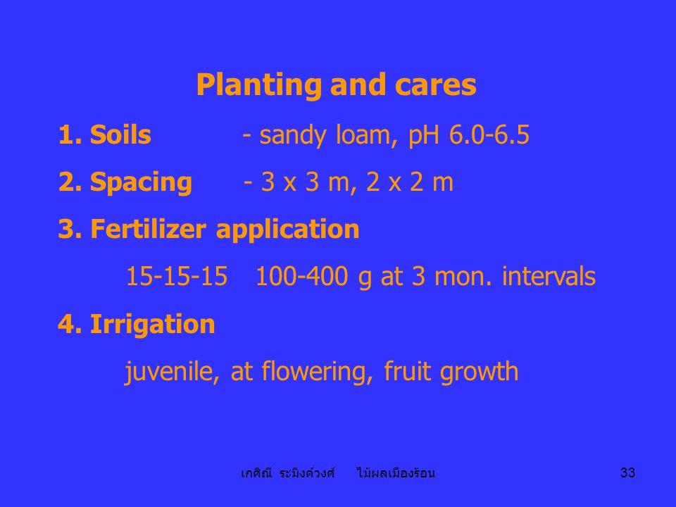 เกศิณี ระมิงค์วงศ์ ไม้ผลเมืองร้อน 33 Planting and cares 1. Soils - sandy loam, pH 6.0-6.5 2. Spacing - 3 x 3 m, 2 x 2 m 3. Fertilizer application 15-1
