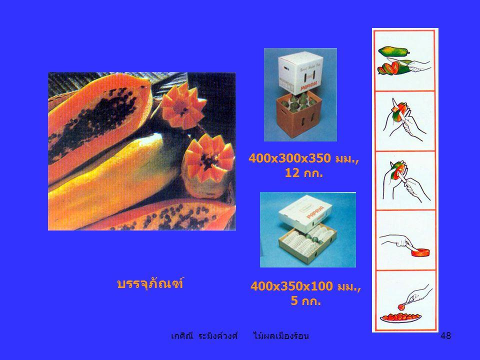 เกศิณี ระมิงค์วงศ์ ไม้ผลเมืองร้อน 48 บรรจุภัณฑ์ 400x300x350 มม., 12 กก. 400x350x100 มม., 5 กก.