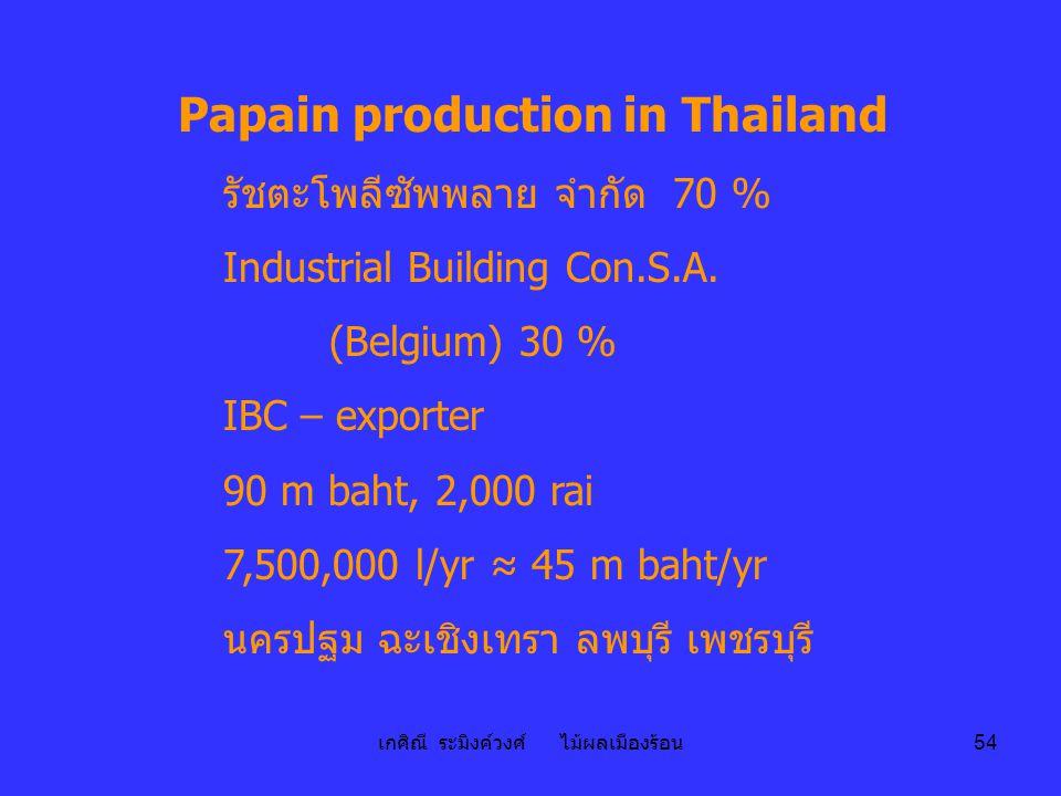 เกศิณี ระมิงค์วงศ์ ไม้ผลเมืองร้อน 54 Papain production in Thailand รัชตะโพลีซัพพลาย จำกัด 70 % Industrial Building Con.S.A. (Belgium) 30 % IBC – expor