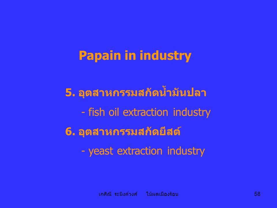 เกศิณี ระมิงค์วงศ์ ไม้ผลเมืองร้อน 58 Papain in industry 5. อุตสาหกรรมสกัดน้ำมันปลา - fish oil extraction industry 6. อุตสาหกรรมสกัดยีสต์ - yeast extra