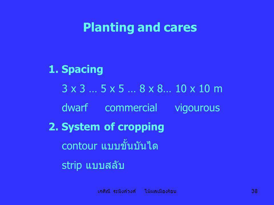 เกศิณี ระมิงค์วงศ์ ไม้ผลเมืองร้อน 38 Planting and cares 1. Spacing 3 x 3 … 5 x 5 … 8 x 8… 10 x 10 m dwarf commercial vigourous 2. System of cropping c