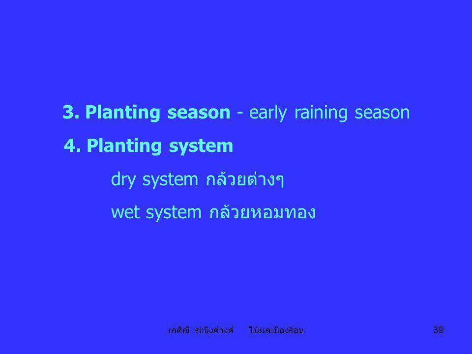 เกศิณี ระมิงค์วงศ์ ไม้ผลเมืองร้อน 39 3. Planting season - early raining season 4. Planting system dry system กล้วยต่างๆ wet system กล้วยหอมทอง