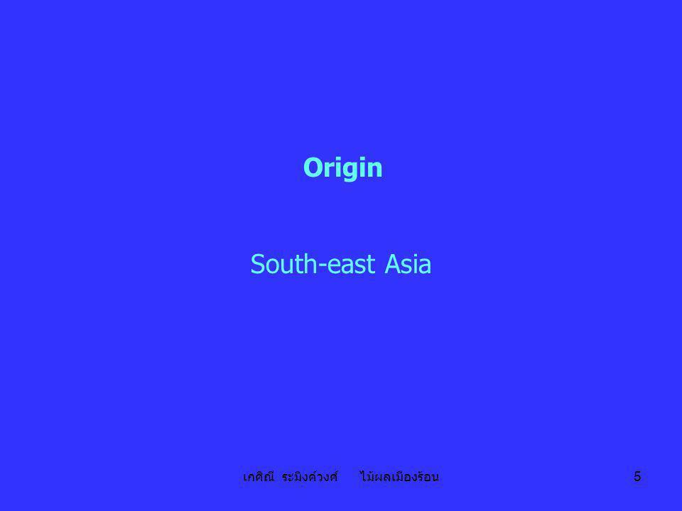 เกศิณี ระมิงค์วงศ์ ไม้ผลเมืองร้อน 5 Origin South-east Asia