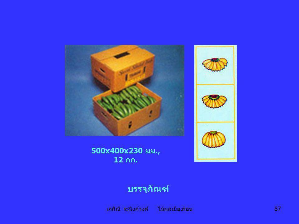 เกศิณี ระมิงค์วงศ์ ไม้ผลเมืองร้อน 67 บรรจุภัณฑ์ 500x400x230 มม., 12 กก.