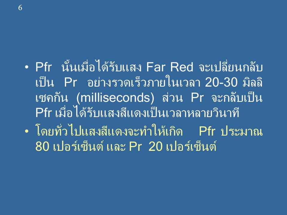 Pfr นั้นเมื่อได้รับแสง Far Red จะเปลี่ยนกลับ เป็น Pr อย่างรวดเร็วภายในเวลา 20-30 มิลลิ เซคกัน (milliseconds) ส่วน Pr จะกลับเป็น Pfr เมื่อได้รับแสงสีแด