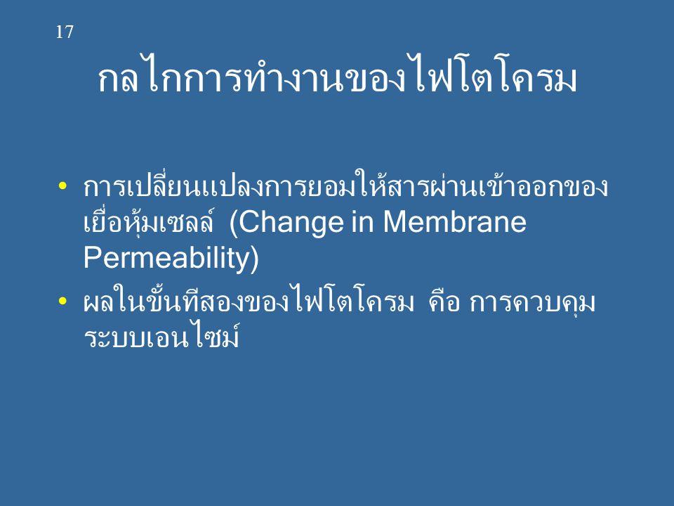 กลไกการทำงานของไฟโตโครม การเปลี่ยนแปลงการยอมให้สารผ่านเข้าออกของ เยื่อหุ้มเซลล์ (Change in Membrane Permeability) ผลในขั้นทีสองของไฟโตโครม คือ การควบค