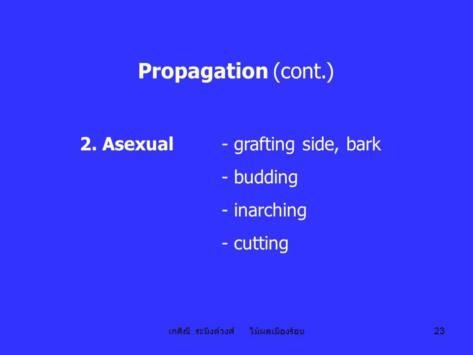เกศิณี ระมิงค์วงศ์ ไม้ผลเมืองร้อน 23 Propagation (cont.) 2. Asexual- grafting side, bark - budding - inarching - cutting