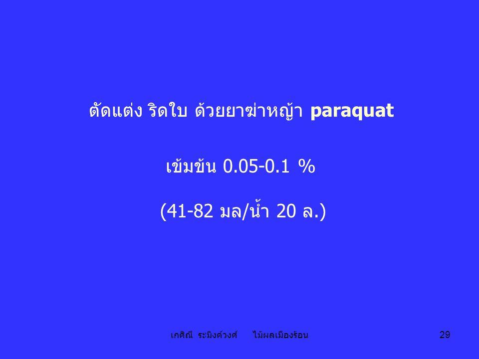 เกศิณี ระมิงค์วงศ์ ไม้ผลเมืองร้อน 29 ตัดแต่ง ริดใบ ด้วยยาฆ่าหญ้า paraquat เข้มข้น 0.05-0.1 % (41-82 มล/น้ำ 20 ล.)