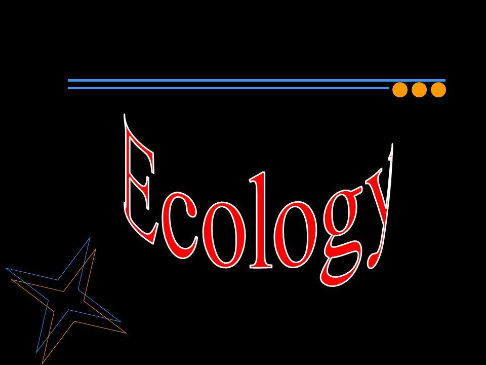 นิเวศวิทยา (ecology) มีรากศัพท์มาจากภาษา กรีก คือ oikos หมายถึง บ้าน หรือ ที่อยู่อาศัย โดยทั่วไปมักหมายถึง การศึกษาความสัมพันธ์ ของสิ่งที่มีชีวิตกับสภาพแวดล้อมทั้งที่มีชีวิตและ ไม่มีชีวิต นอกจากนี้ยังมีอีกหลายคนได้ให้ ความหมายของคำว่า ecology แตกต่างกัน นิเวศวิทยา หมายถึง การศึกษาถึงความสัมพันธ์ ระหว่างสิ่งมีชีวิตกับสิ่งแวดล้อม สิ่งมีชีวิต โดยทั่วไปกล่าวถึงพืชและสัตว์เป็นองค์ประกอบ อย่างหนึ่งของระบบนิเวศมีด้วยกันมากมาย หลายชนิด แต่ละชนิดต่างทำหน้าที่เป็นตัวแทน ของประชากร Ecology