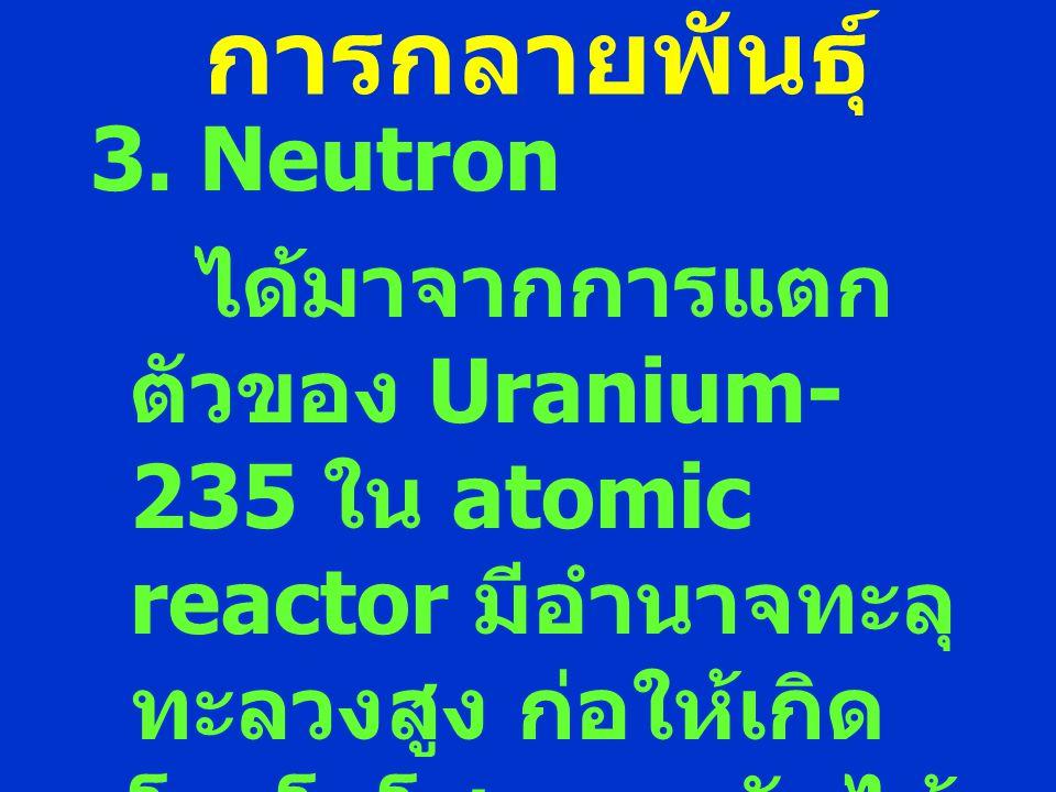 การกลายพันธุ์ 3. Neutron ได้มาจากการแตก ตัวของ Uranium- 235 ใน atomic reactor มีอำนาจทะลุ ทะลวงสูง ก่อให้เกิด โครโมโซมแตกหักได้ ง่าย