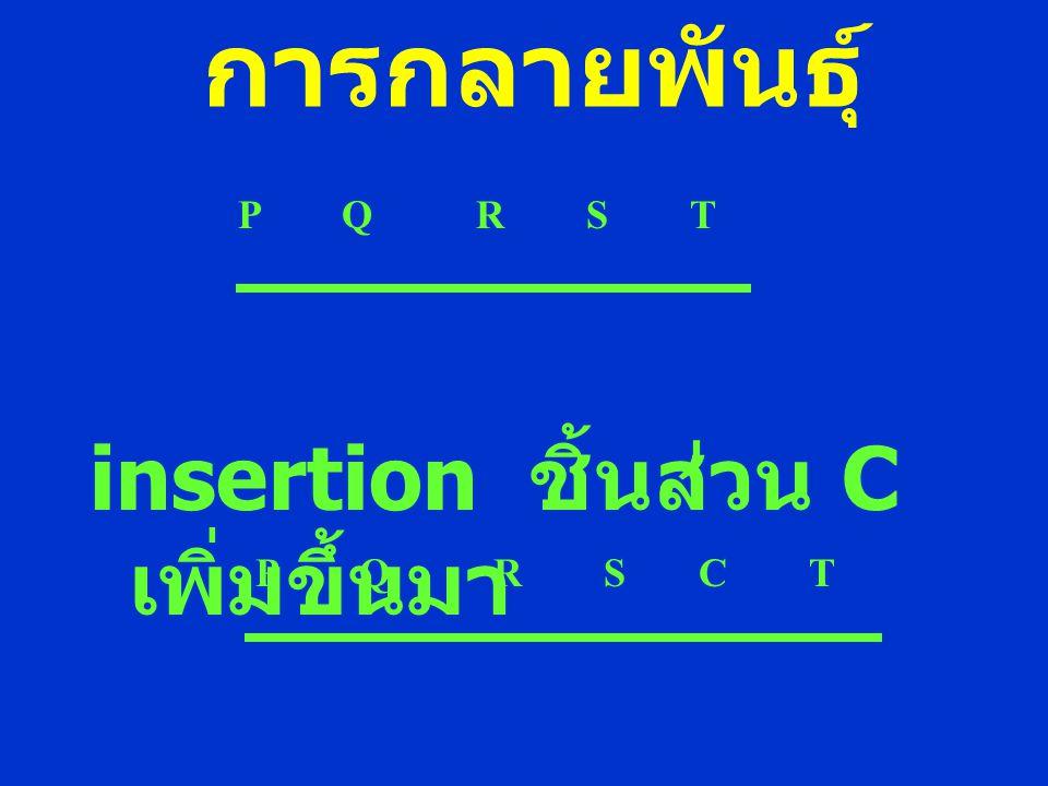 การกลายพันธุ์ insertion ชิ้นส่วน C เพิ่มขึ้นมา P Q R S T P Q R S C T