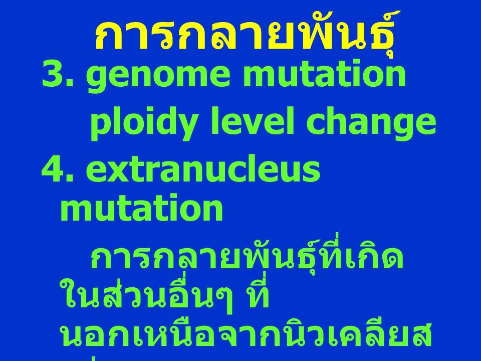 การกลายพันธุ์ 3. genome mutation ploidy level change 4. extranucleus mutation การกลายพันธุ์ที่เกิด ในส่วนอื่นๆ ที่ นอกเหนือจากนิวเคลียส เช่น คลอโรพลาส