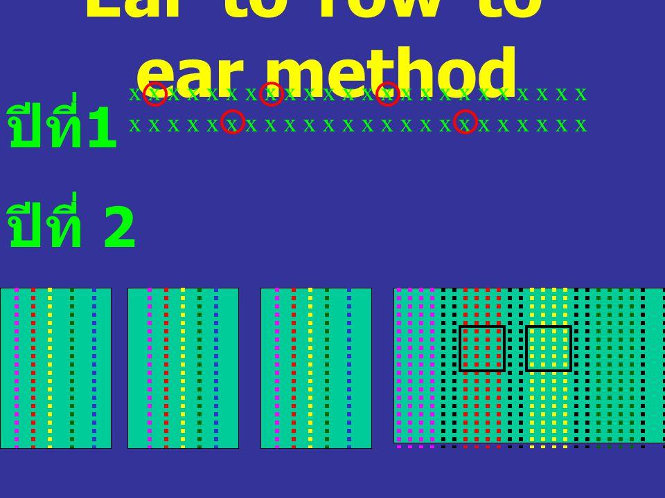 Ear-to-row-to- ear method ปีที่ 1 x x x x x x x x x x x x x x x x x x x x x x x x ปีที่ 2