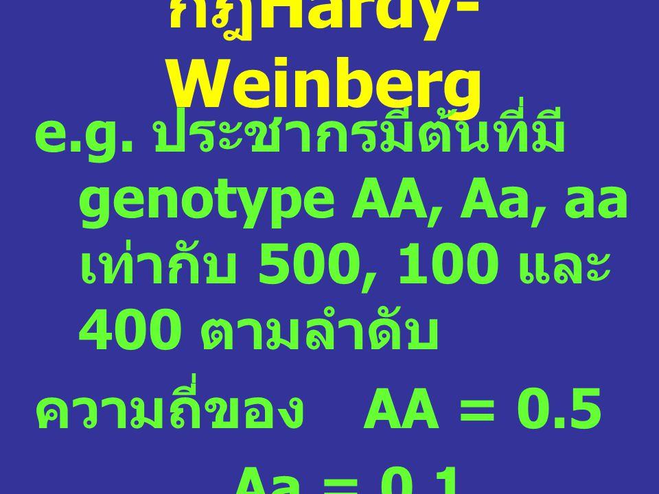 กฎ Hardy- Weinberg e.g. ประชากรมีต้นที่มี genotype AA, Aa, aa เท่ากับ 500, 100 และ 400 ตามลำดับ ความถี่ของ AA = 0.5 Aa = 0.1 aa = 0.4