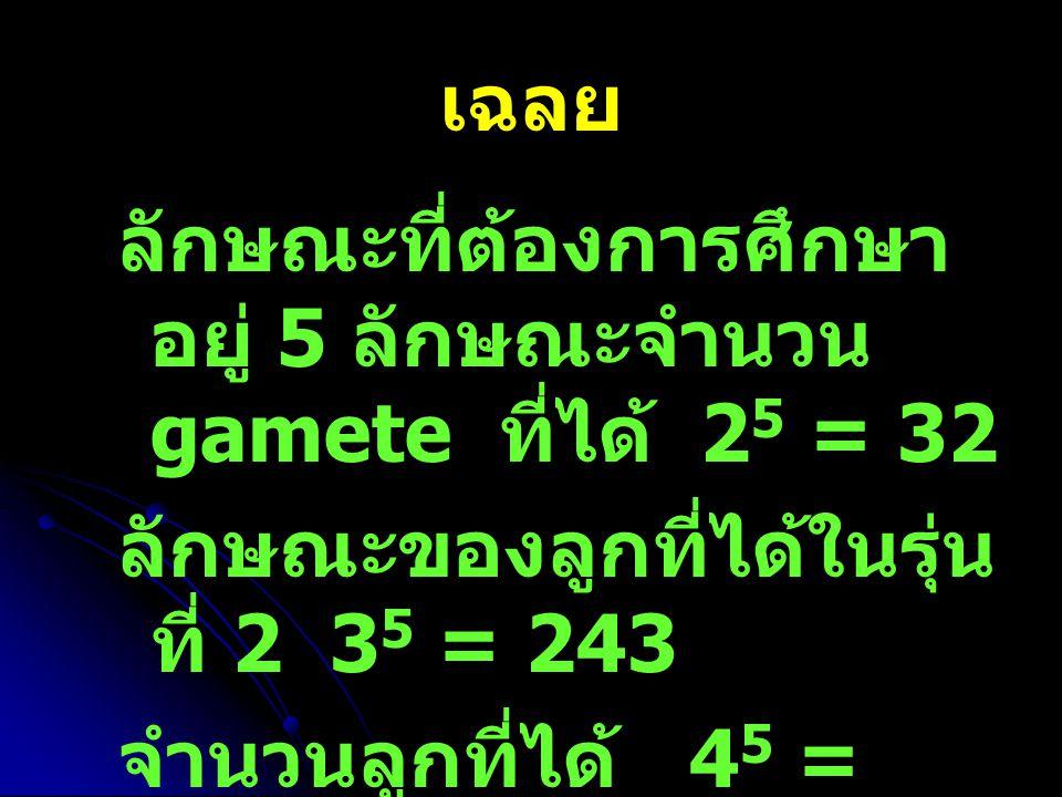 เฉลย ลักษณะที่ต้องการศึกษา อยู่ 5 ลักษณะจำนวน gamete ที่ได้ 2 5 = 32 ลักษณะของลูกที่ได้ในรุ่น ที่ 2 3 5 = 243 จำนวนลูกที่ได้ 4 5 = 1024
