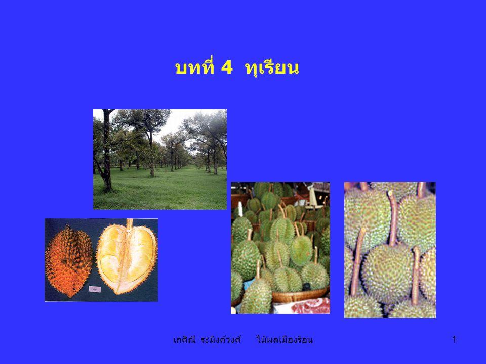 เกศิณี ระมิงค์วงศ์ ไม้ผลเมืองร้อน 1 บทที่ 4 ทุเรียน