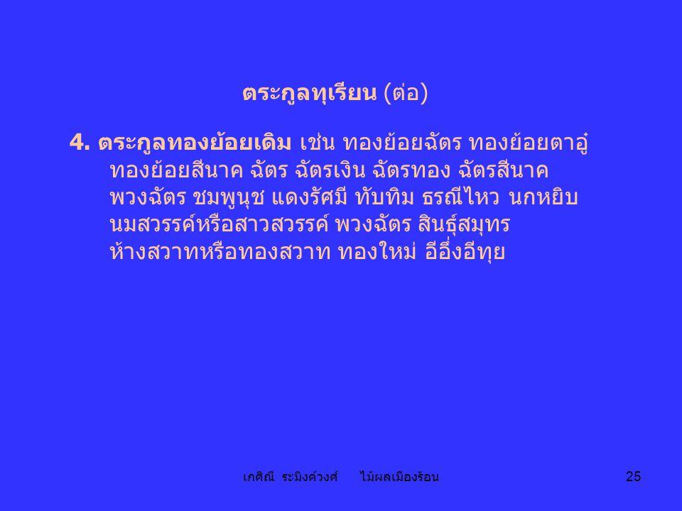 เกศิณี ระมิงค์วงศ์ ไม้ผลเมืองร้อน 25 ตระกูลทุเรียน (ต่อ) 4. ตระกูลทองย้อยเดิม เช่น ทองย้อยฉัตร ทองย้อยตาอู๋ ทองย้อยสีนาค ฉัตร ฉัตรเงิน ฉัตรทอง ฉัตรสีน