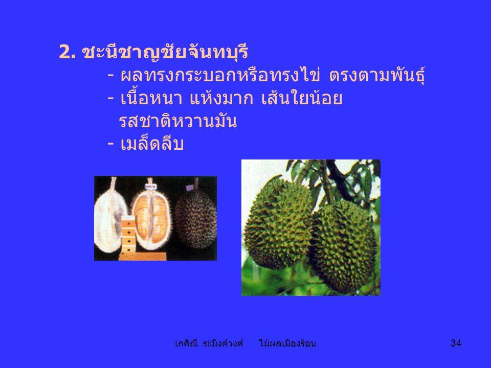 เกศิณี ระมิงค์วงศ์ ไม้ผลเมืองร้อน 34 2. ชะนีชาญชัยจันทบุรี - ผลทรงกระบอกหรือทรงไข่ ตรงตามพันธุ์ - เนื้อหนา แห้งมาก เส้นใยน้อย รสชาติหวานมัน - เมล็ดลีบ