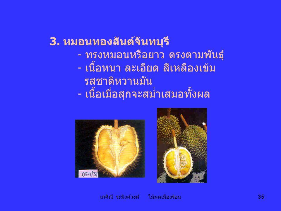 เกศิณี ระมิงค์วงศ์ ไม้ผลเมืองร้อน 35 3. หมอนทองสันต์จันทบุรี - ทรงหมอนหรือยาว ตรงตามพันธุ์ - เนื้อหนา ละเอียด สีเหลืองเข้ม รสชาติหวานมัน - เนื้อเมื่อส