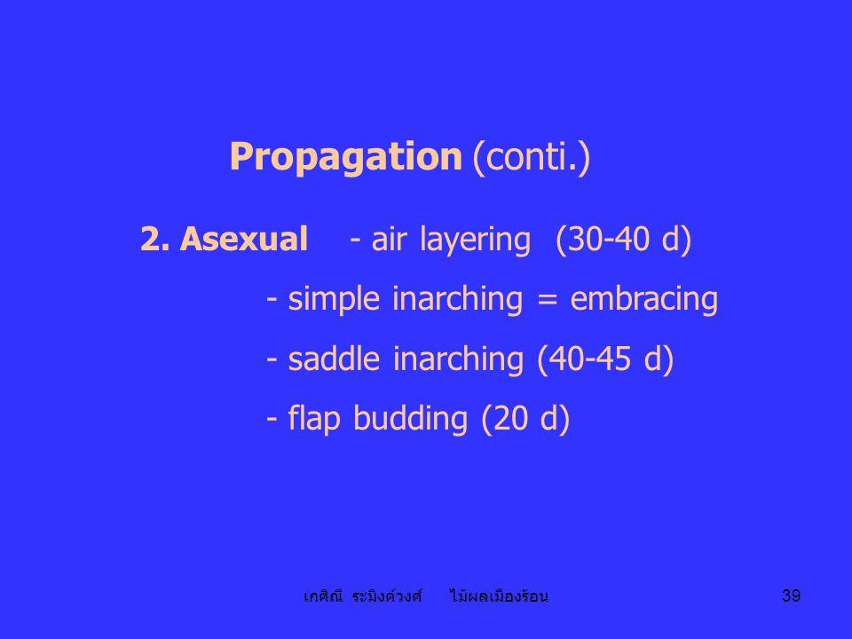 เกศิณี ระมิงค์วงศ์ ไม้ผลเมืองร้อน 39 Propagation (conti.) 2. Asexual - air layering (30-40 d) - simple inarching = embracing - saddle inarching (40-45