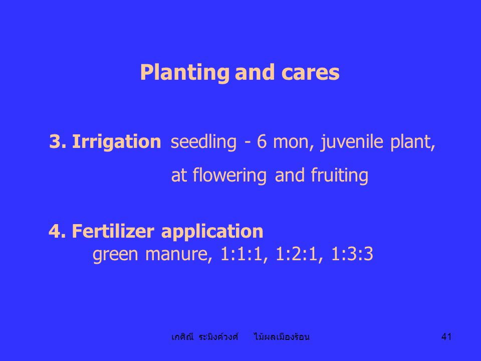 เกศิณี ระมิงค์วงศ์ ไม้ผลเมืองร้อน 41 Planting and cares 3. Irrigation seedling - 6 mon, juvenile plant, at flowering and fruiting 4. Fertilizer applic
