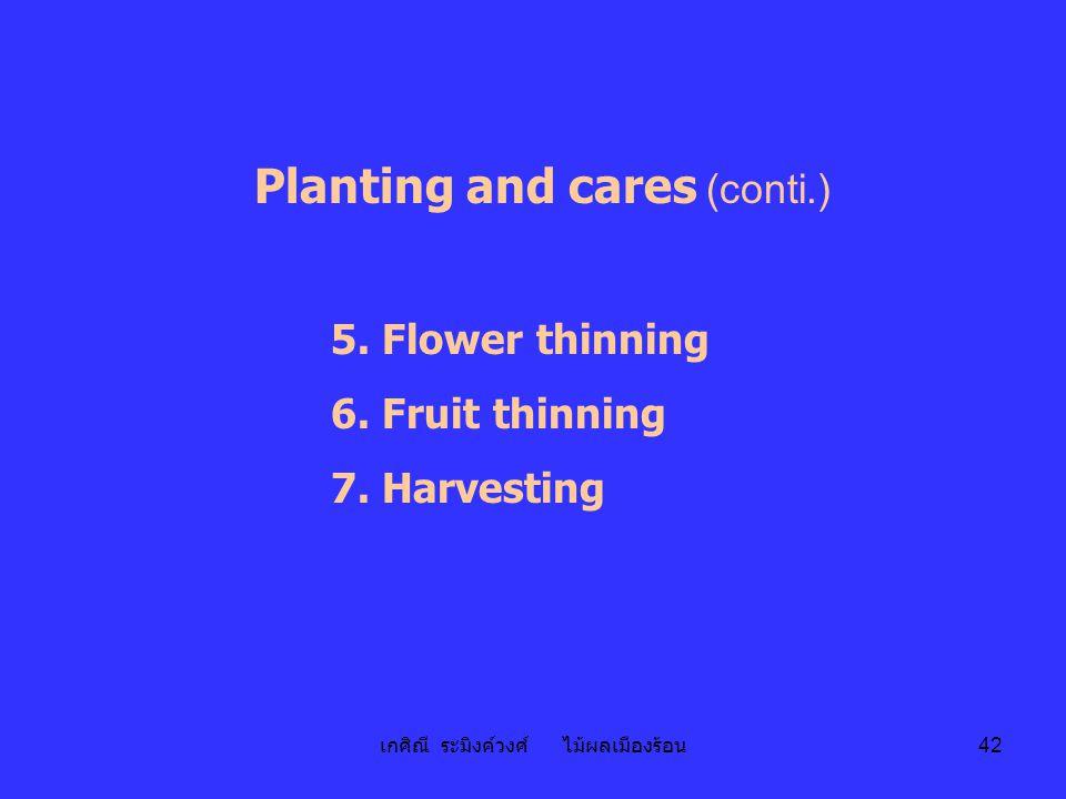 เกศิณี ระมิงค์วงศ์ ไม้ผลเมืองร้อน 42 Planting and cares (conti.) 5. Flower thinning 6. Fruit thinning 7. Harvesting