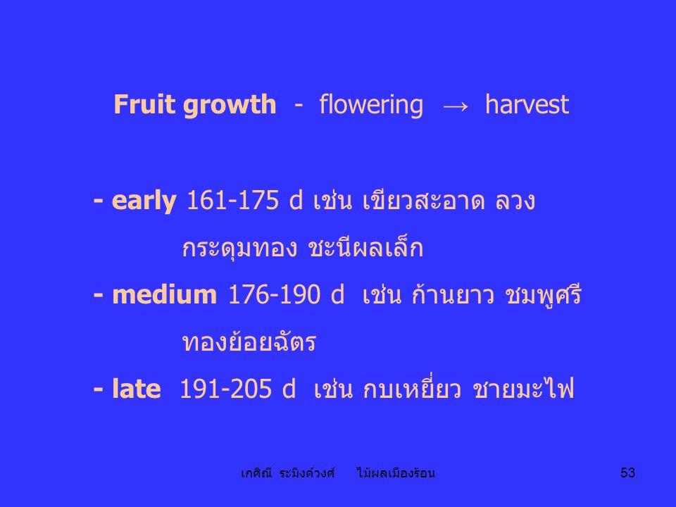 เกศิณี ระมิงค์วงศ์ ไม้ผลเมืองร้อน 53 Fruit growth - flowering → harvest - early 161-175 d เช่น เขียวสะอาด ลวง กระดุมทอง ชะนีผลเล็ก - medium 176-190 d
