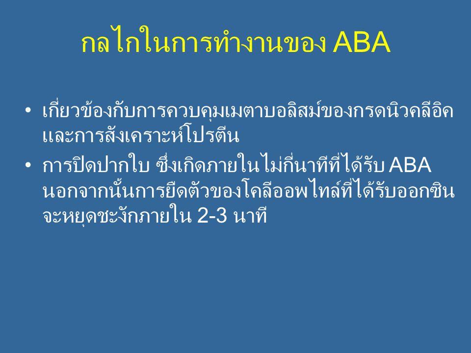 กลไกในการทำงานของ ABA เกี่ยวข้องกับการควบคุมเมตาบอลิสม์ของกรดนิวคลีอิค และการสังเคราะห์โปรตีน การปิดปากใบ ซึ่งเกิดภายในไม่กี่นาทีที่ได้รับ ABA นอกจากน