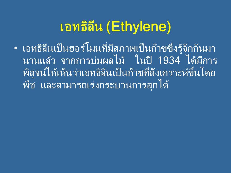 เอทธิลีน (Ethylene) เอทธิลีนเป็นฮอร์โมนที่มีสภาพเป็นก๊าซซึ่งรู้จักกันมา นานแล้ว จากการบ่มผลไม้ ในปี 1934 ได้มีการ พิสูจน์ให้เห็นว่าเอทธิลีนเป็นก๊าซที่