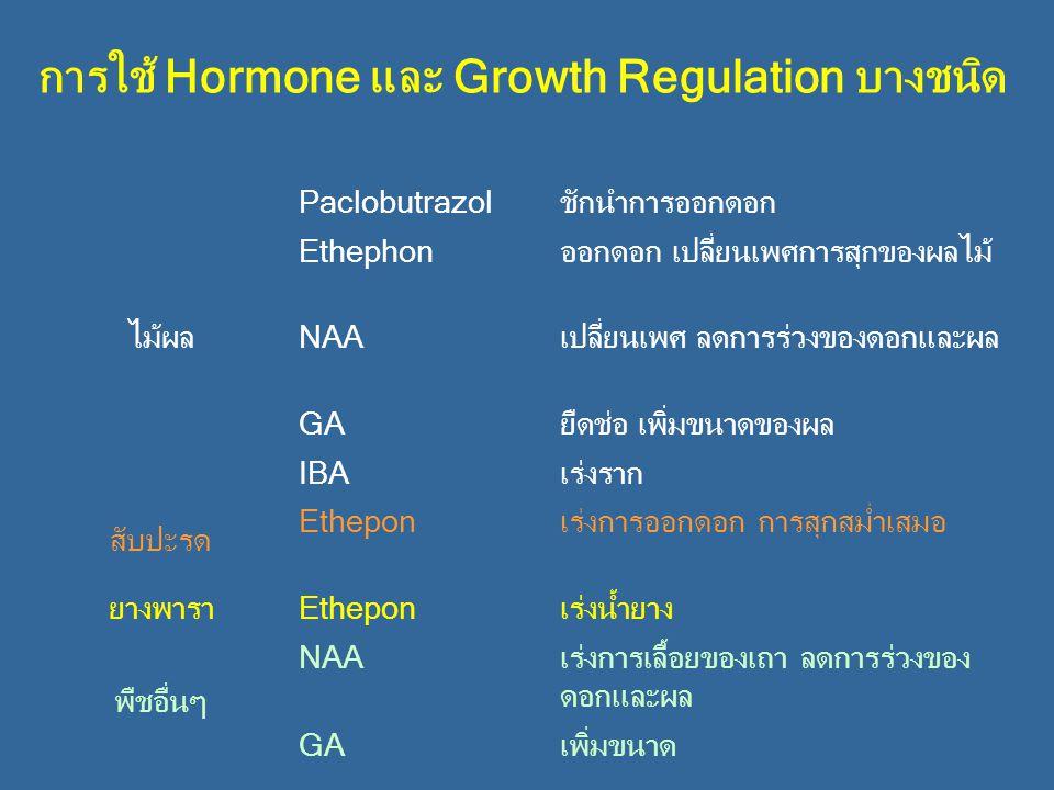 การใช้ Hormone และ Growth Regulation บางชนิด ไม้ผล Paclobutrazolชักนำการออกดอก Ethephonออกดอก เปลี่ยนเพศการสุกของผลไม้ NAAเปลี่ยนเพศ ลดการร่วงของดอกแล