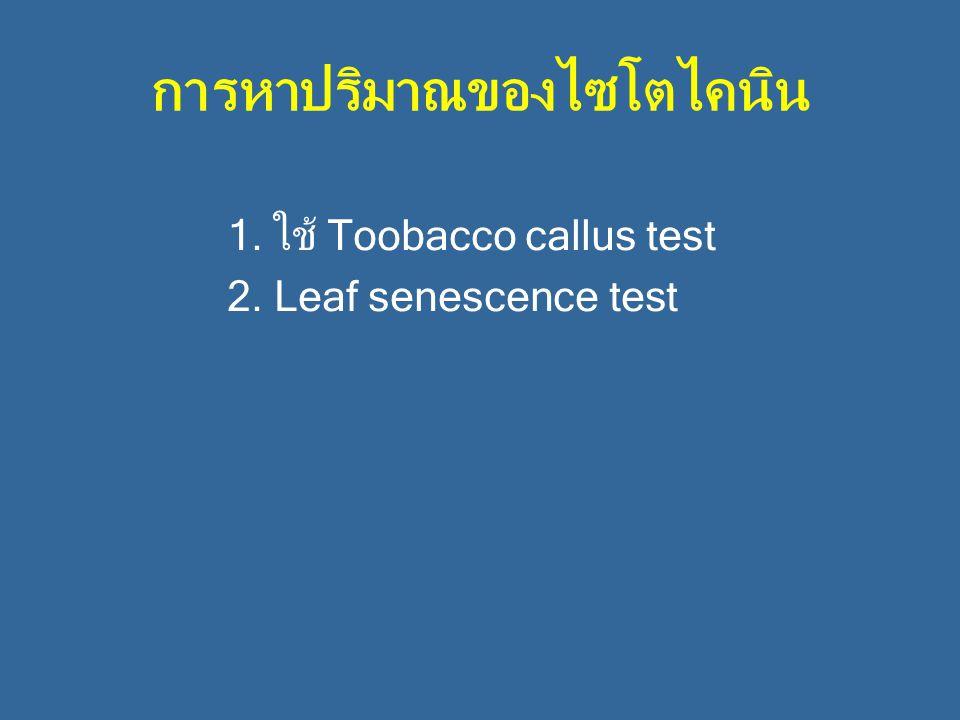 การหาปริมาณของไซโตไคนิน 1. ใช้ Toobacco callus test 2. Leaf senescence test