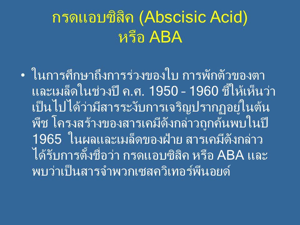 กรดแอบซิสิค (Abscisic Acid) หรือ ABA ในการศึกษาถึงการร่วงของใบ การพักตัวของตา และเมล็ดในช่วงปี ค.ศ. 1950 – 1960 ชี้ให้เห็นว่า เป็นไปได้ว่ามีสารระงับกา