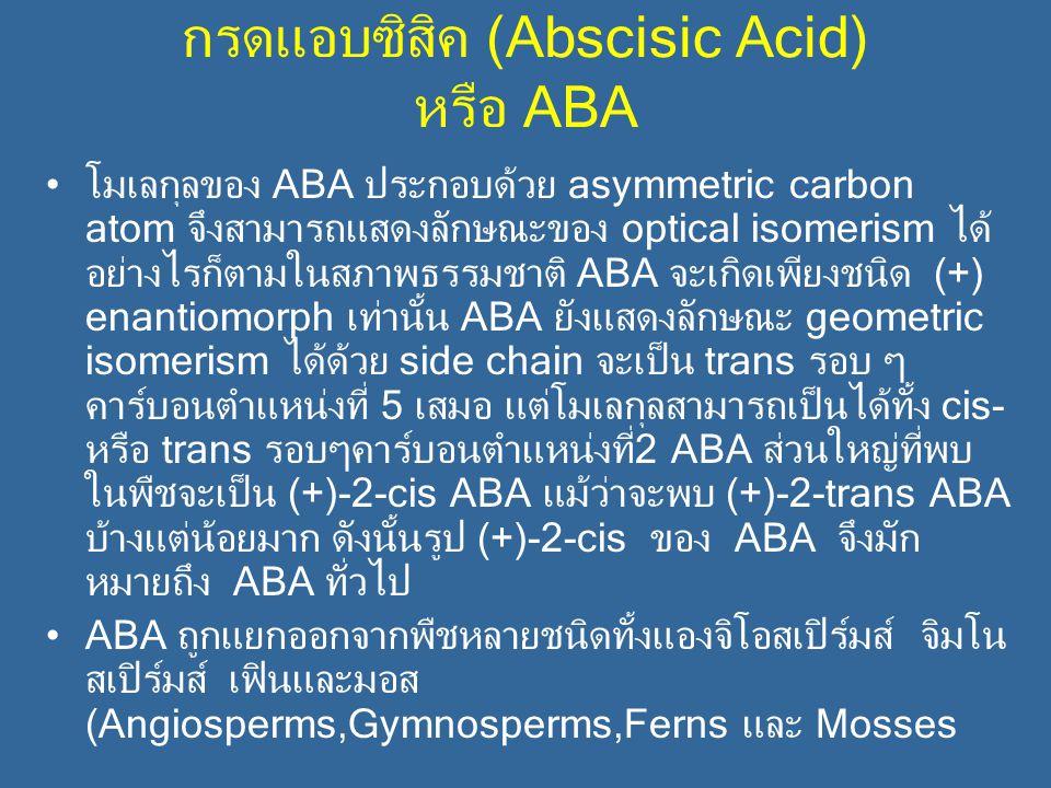 กรดแอบซิสิค (Abscisic Acid) หรือ ABA โมเลกุลของ ABA ประกอบด้วย asymmetric carbon atom จึงสามารถแสดงลักษณะของ optical isomerism ได้ อย่างไรก็ตามในสภาพธ