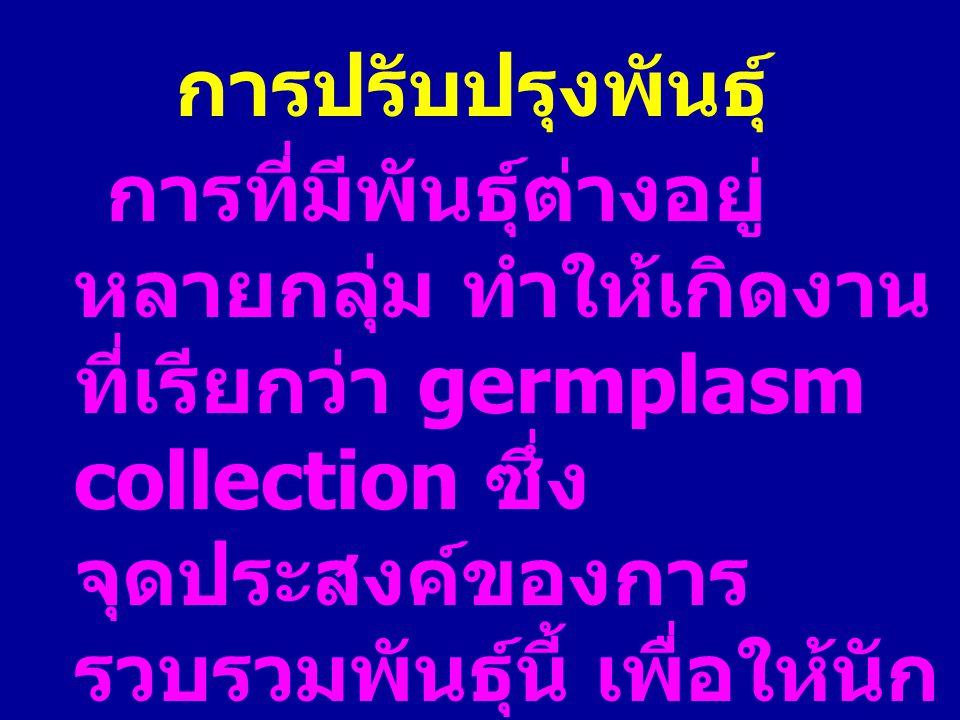 การปรับปรุงพันธุ์ การที่มีพันธุ์ต่างอยู่ หลายกลุ่ม ทำให้เกิดงาน ที่เรียกว่า germplasm collection ซึ่ง จุดประสงค์ของการ รวบรวมพันธุ์นี้ เพื่อให้นัก ปรั