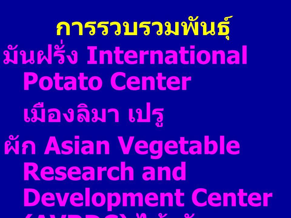 การรวบรวมพันธุ์ มันฝรั่ง International Potato Center เมืองลิมา เปรู ผัก Asian Vegetable Research and Development Center (AVRDC) ไต้หวัน Royal Botanic