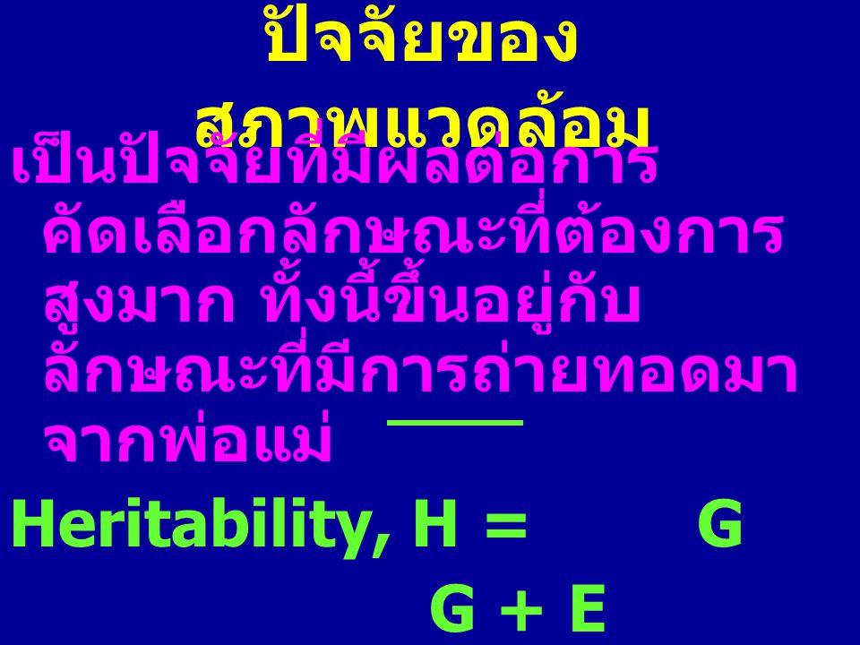 ปัจจัยของ สภาพแวดล้อม เป็นปัจจัยที่มีผลต่อการ คัดเลือกลักษณะที่ต้องการ สูงมาก ทั้งนี้ขึ้นอยู่กับ ลักษณะที่มีการถ่ายทอดมา จากพ่อแม่ Heritability, H = G