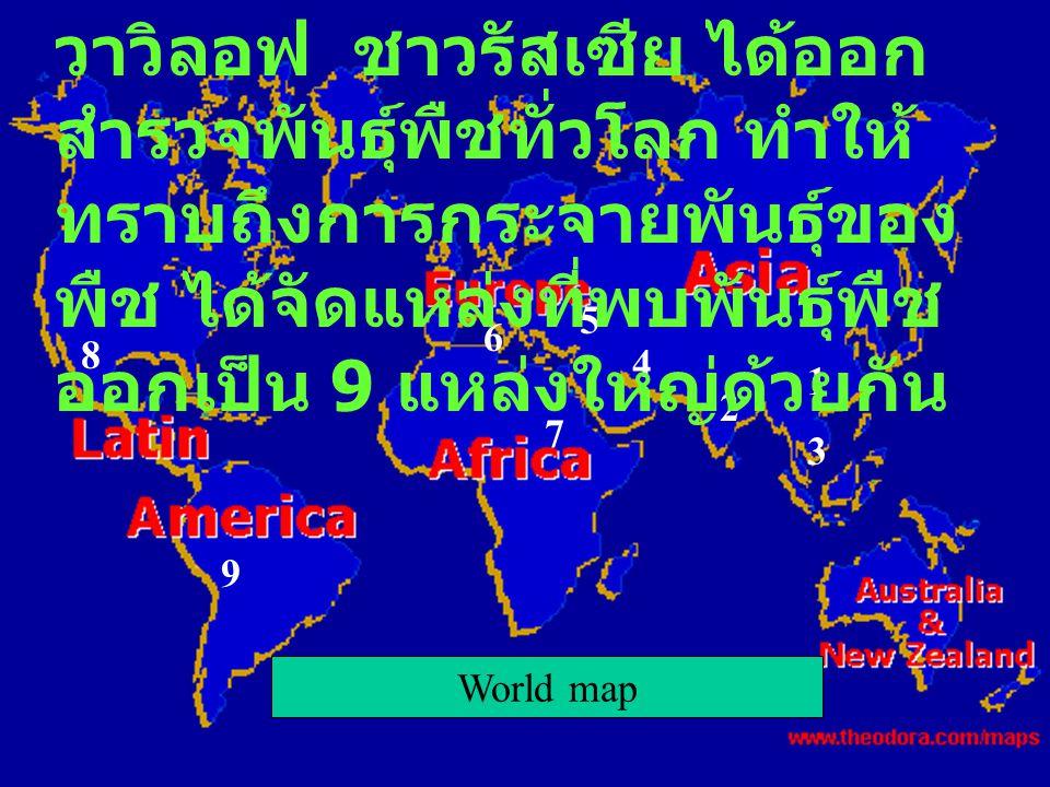 World map 1 2 3 4 5 6 7 8 9 วาวิลอฟ ชาวรัสเซีย ได้ออก สำรวจพันธุ์พืชทั่วโลก ทำให้ ทราบถึงการกระจายพันธุ์ของ พืช ได้จัดแหล่งที่พบพันธุ์พืช ออกเป็น 9 แห